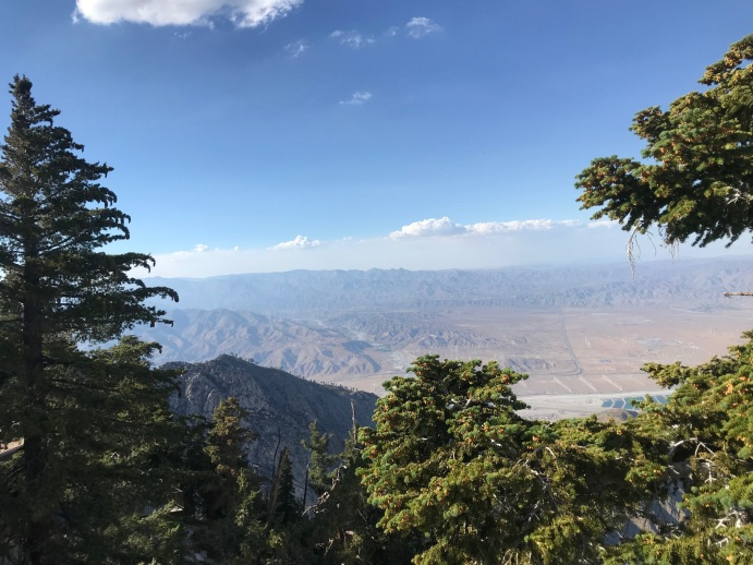 mt san jacinto view